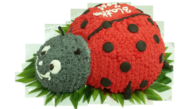 Nowy wzór tortu dla dzieci BIEDRONKA